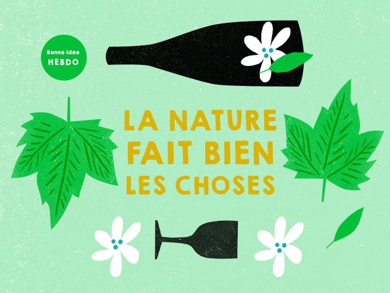 Choisir un vin nature. quel.vin