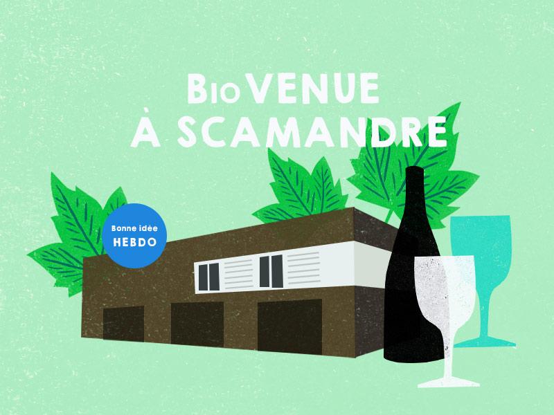 Choisir Le Vin Rouge De Scamandre. Quel.vin
