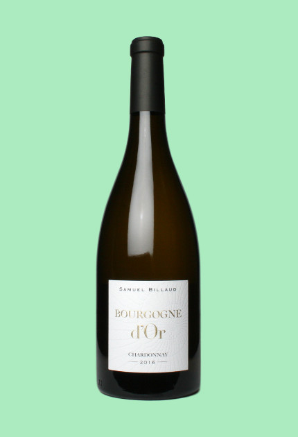 Samuel Billaud Bourgogne D'Or 2016